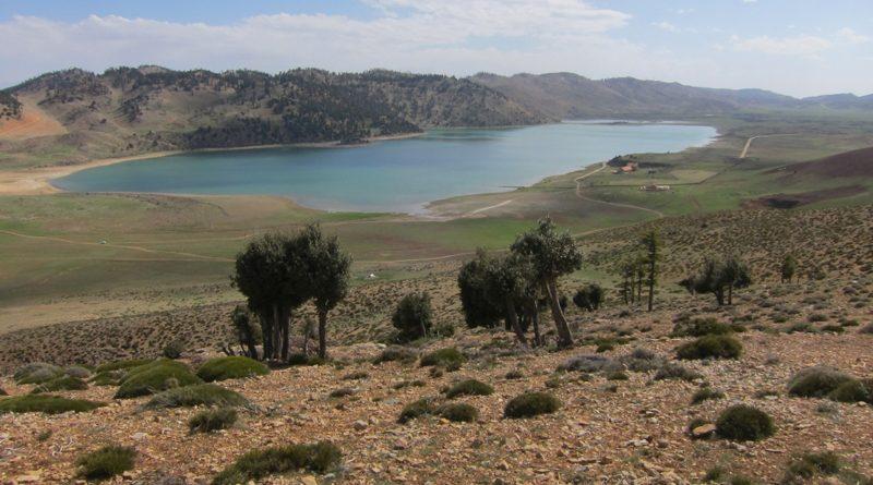 Der Sidi Ali See im Mittleren Atlas Marokkos liegt auf einer Höhe von 2.080 Metern über dem Meeresspiegel. Foto: Institut für Geographie/Universität Münster