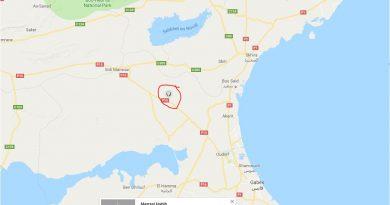 Erdbeben El Khbayet, 34 km westlich von Skhira, östlich Menzel Habib