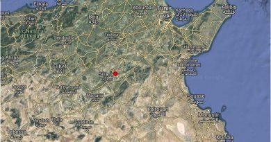 Leichtes Erdbeben bei Siliana, Tunesien (M2,8)
