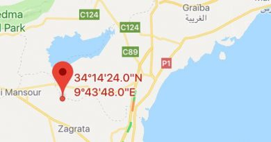 Gabés: Leichtes Erdbeben (M3,62) bei Menzel El Habib