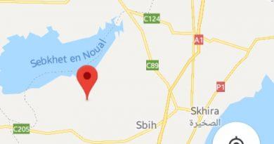 Leichtes Erdbeben (M3,0) bei Skhira zwischen Sidi Bouzid und Sfax