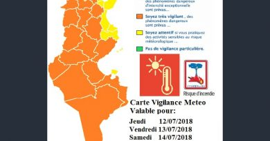 Warnung vor extremen Temperaturen in den nächsten drei Tagen (bis 14.07.2018)