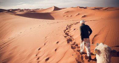 Menschen haben den Beginn der Wüste Sahara um 500 Jahre verzögert