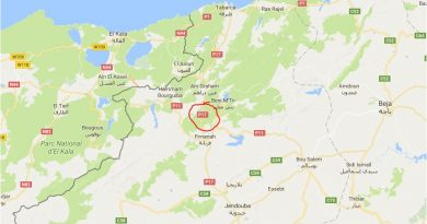 Leichtes Erdbeben im Gouvernorat Jendouba