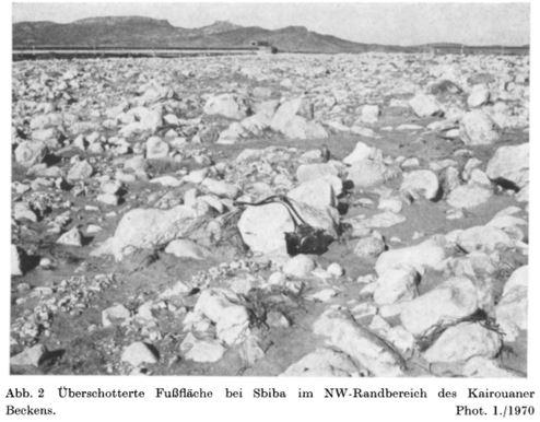 Die Hochwasserkatastrophe in Tunesien im Herbst 1969