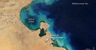 Die Blüte von Phytoplankton im Golf von Gabés im März 2017