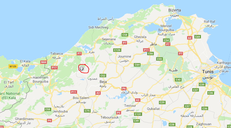 Moderates Erdbeben bei Amdoun im Gouvernorat Béja (M3,11)