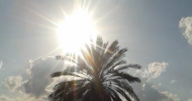 Wetterberuhigung und sonnig