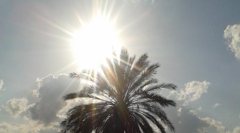 Wetterprognose für Dienstag, den 16. Juli 2019 in Tunesien