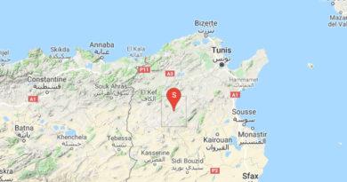 Leichtes Erdbeben westlich der Stadt Siliana