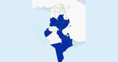 Niederschlagsmengen Tunesien: Sa., 30 Mai – So., 31 Mai 2020, 7 Uhr