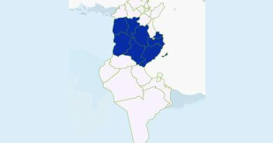 Niederschlagsmengen Tunesien: Mo., 1 Juni – Di., 2 Juni 2020, 7 Uhr