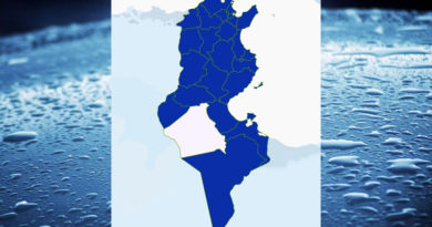 Niederschlagsmengen Tunesien: Mo, 23 Nov – Di, 24 Nov 2020, 7 Uhr