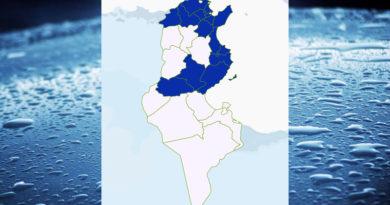 Niederschlagsmengen Tunesien: Do, 3 Dez – Fr, 4 Dez 2020, 7 Uhr