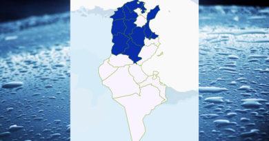 Niederschlagsmengen Tunesien: Sa, 19 Dez – So, 20 Dez 2020