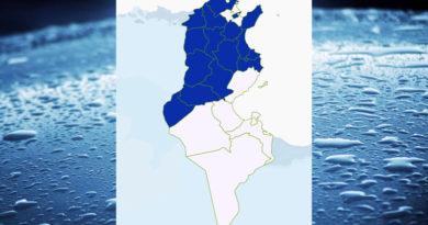 Niederschlagsmengen Tunesien: Fr, 19 März – Sa, 20 März 2020, 7 Uhr