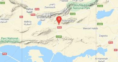 1 Juni 2021: Erdbeben bei Belkhir im Gouvernorat Gafsa [M3.20]